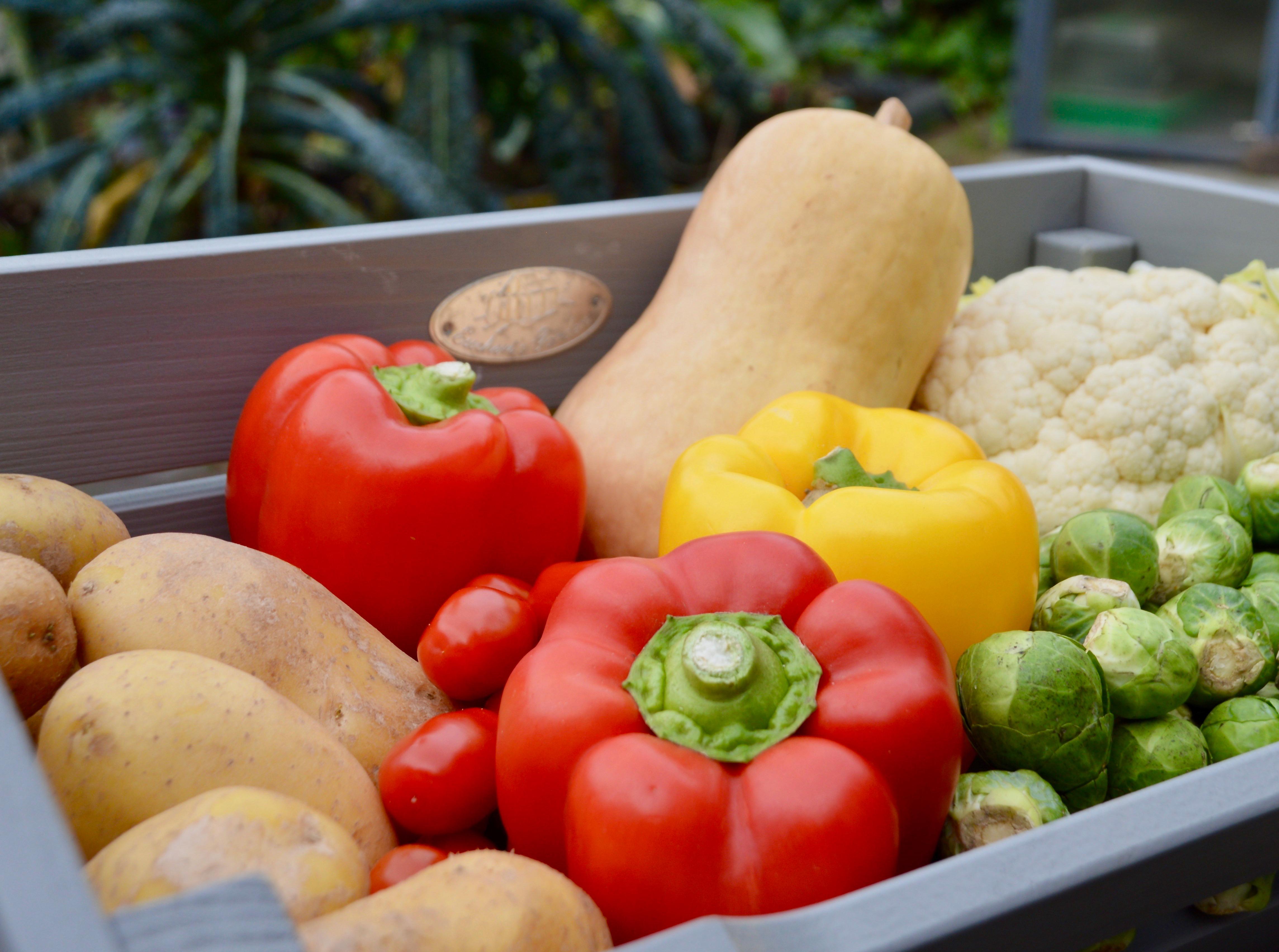 groenten.jpeg